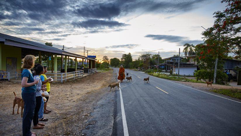 Om 04.00 uur wordt er gekookt voor de monniken: mango met sticky kokosrijst en curry met ananas en geroosterd varkensvlees gaat in plastic tasjes en worden per scooter afgeleverd.