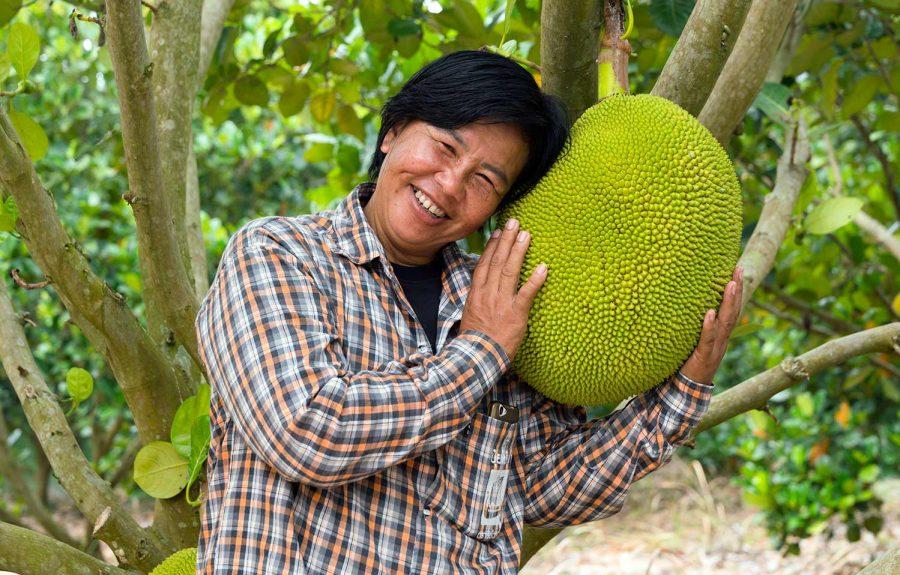 Jackfruit met Khun Nipalin