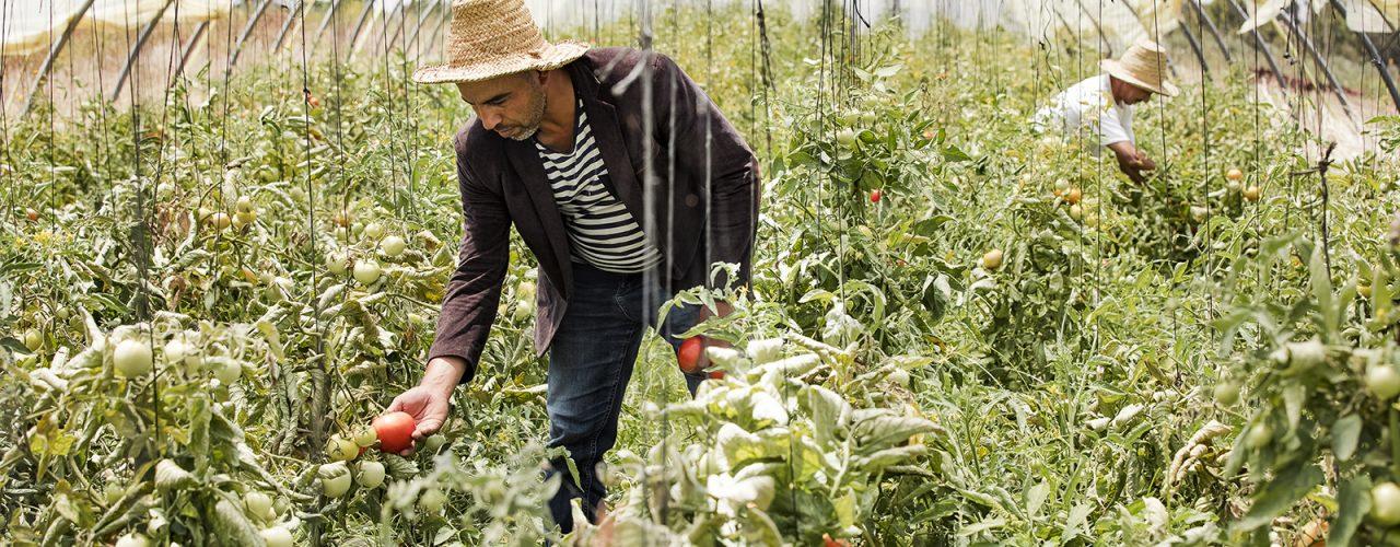 Fairtrade Original kijkje in de keuken marokko