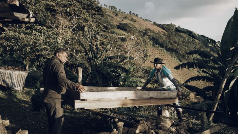 Fairtrade Original, koffieboer Edwin en zijn vader