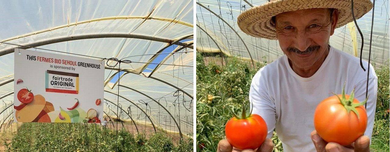 Fairtrade Original tomatenkas en tomatenteler Mohammed in Rabat