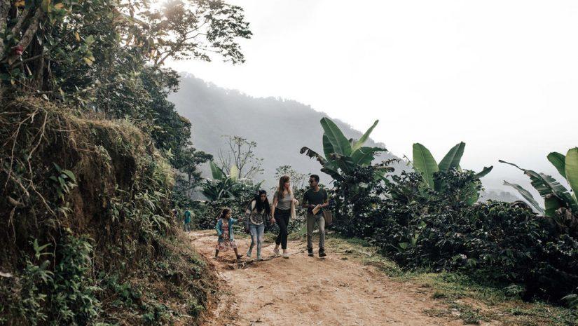 Fairtrade Original, Reisfoto Community Coffee Colombia