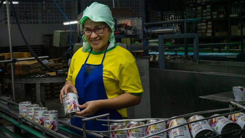 Fabriek bananenbloesem - Fairtrade Original